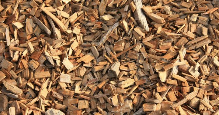 Biomassa Fryslân wil Friese pelleteerfabriek
