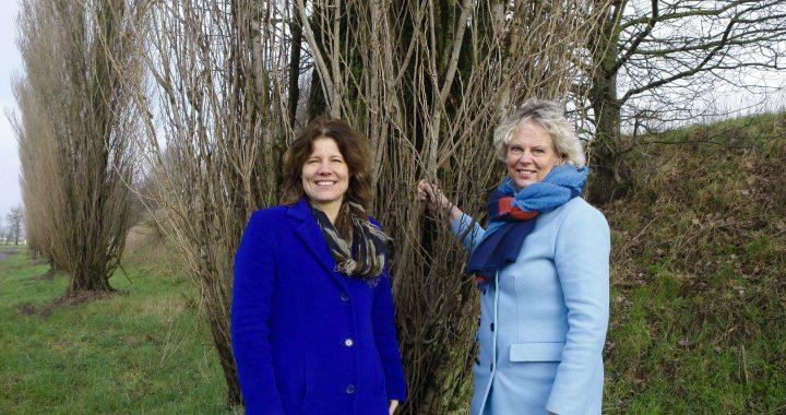 Circulair Friesland en de Friese 'gezond verstand' economie
